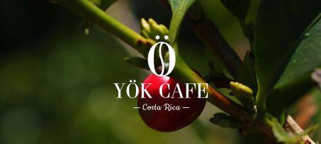 Yök Cafe Logo