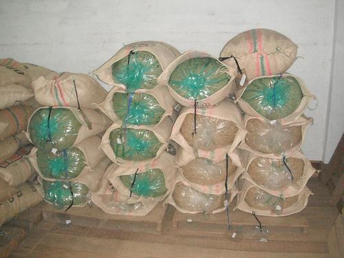 Grainpro bags.